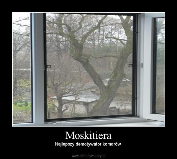 Moskitiera – Najlepszy demotywator komarów