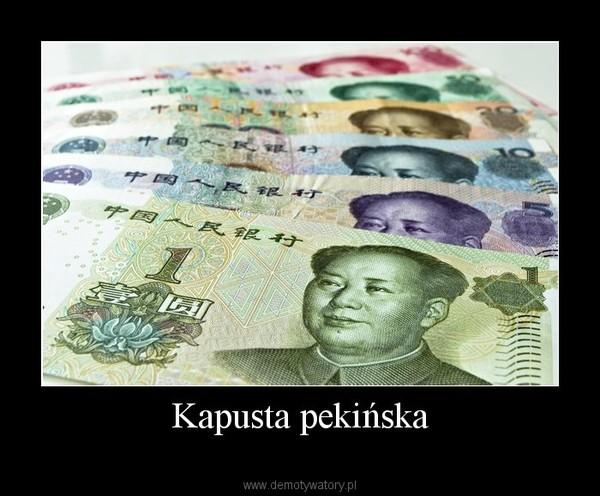 Kapusta pekińska –