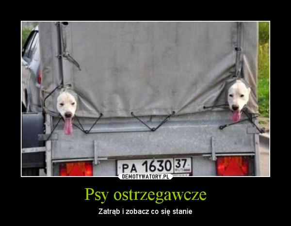 Psy ostrzegawcze – Zatrąb i zobacz co się stanie