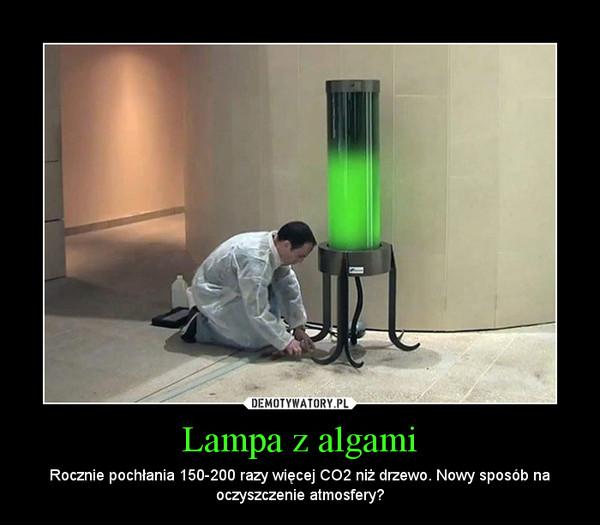 Lampa z algami – Rocznie pochłania 150-200 razy więcej CO2 niż drzewo. Nowy sposób na oczyszczenie atmosfery?