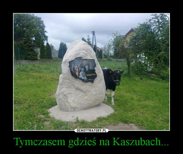 Tymczasem gdzieś na Kaszubach... –