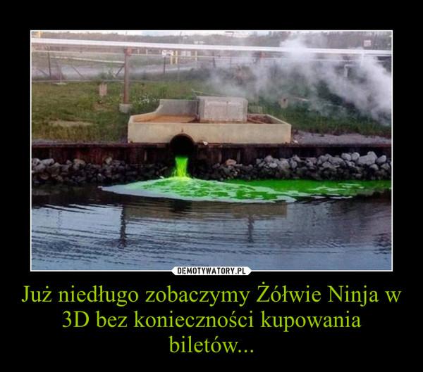 Już niedługo zobaczymy Żółwie Ninja w 3D bez konieczności kupowania biletów... –