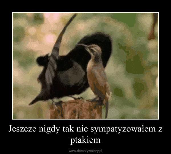 Jeszcze nigdy tak nie sympatyzowałem z ptakiem –