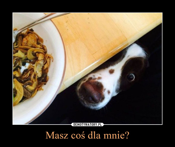 Masz coś dla mnie? –