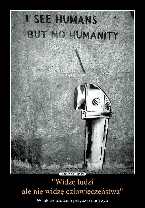 """""""Widzę ludziale nie widzę człowieczeństwa"""" – W takich czasach przyszło nam żyć"""