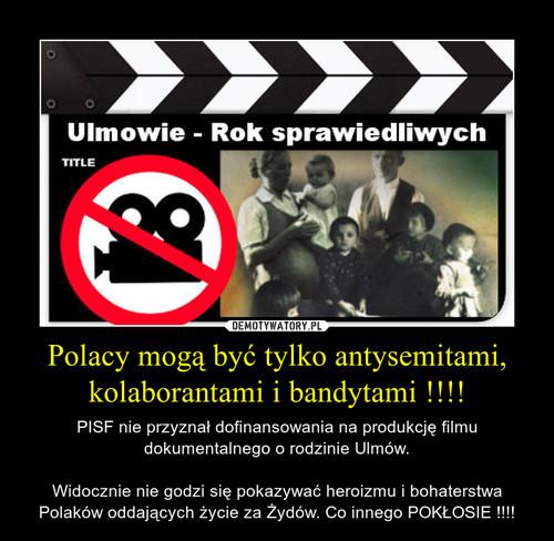 Polacy mogą być tylko antysemitami, kolaborantami i bandytami !!!!