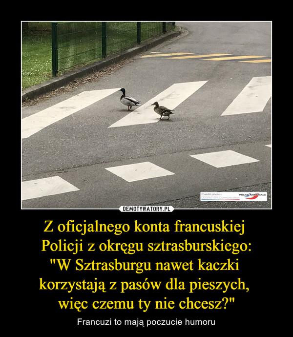 """Z oficjalnego konta francuskiej Policji z okręgu sztrasburskiego:""""W Sztrasburgu nawet kaczki korzystają z pasów dla pieszych, więc czemu ty nie chcesz?"""" – Francuzi to mają poczucie humoru"""