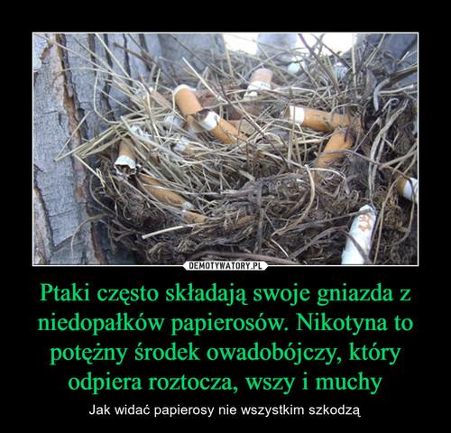 Ptaki często składają swoje gniazda z niedopałków papierosów. Nikotyna to potężny środek owadobójczy, który odpiera roztocza, wszy i muchy
