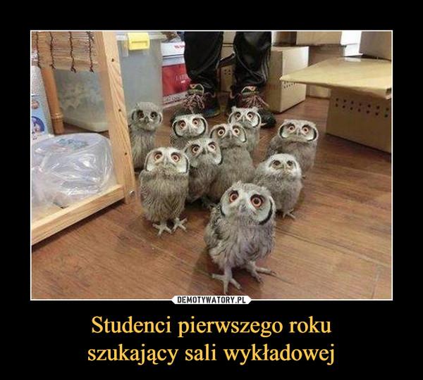 Studenci pierwszego rokuszukający sali wykładowej –