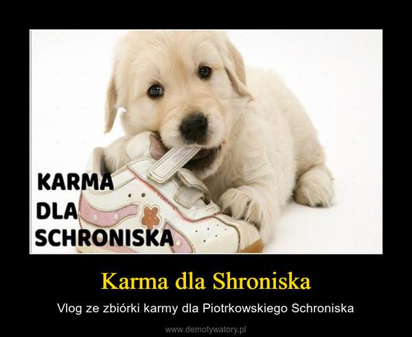 Karma dla Shroniska – Vlog ze zbiórki karmy dla Piotrkowskiego Schroniska