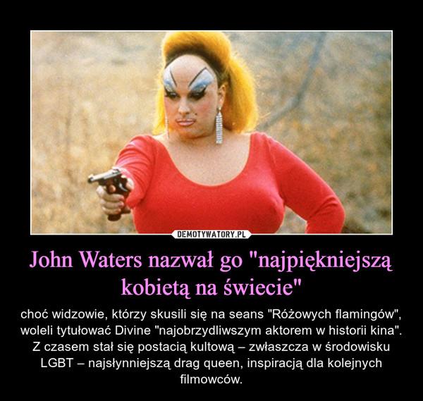 """John Waters nazwał go """"najpiękniejszą kobietą na świecie"""" – choć widzowie, którzy skusili się na seans """"Różowych flamingów"""", woleli tytułować Divine """"najobrzydliwszym aktorem w historii kina"""". Z czasem stał się postacią kultową – zwłaszcza w środowisku LGBT – najsłynniejszą drag queen, inspiracją dla kolejnych filmowców."""