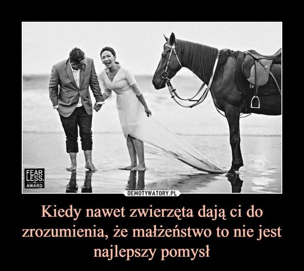 Kiedy nawet zwierzęta dają ci do zrozumienia, że małżeństwo to nie jest najlepszy pomysł –