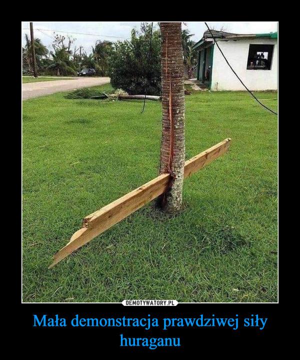 Mała demonstracja prawdziwej siły huraganu –
