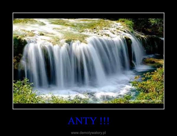 ANTY !!! –