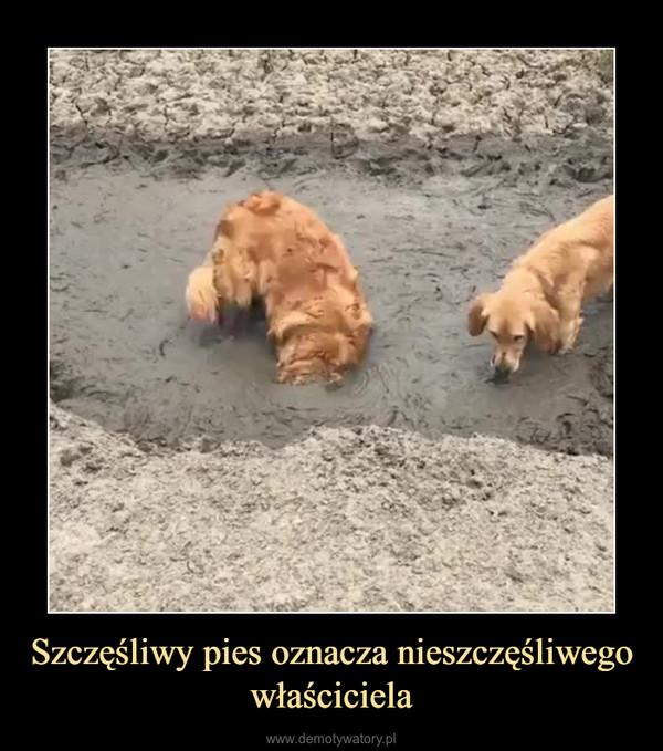 Szczęśliwy pies oznacza nieszczęśliwego właściciela –