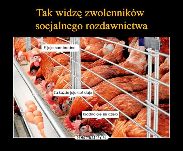–  Ej jaja nam kradno!Za każde jajo coś dajoKradno ale sie dzieło