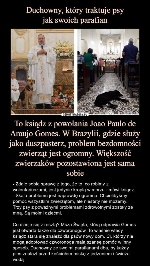 To ksiądz z powołania Joao Paulo de Araujo Gomes. W Brazylii, gdzie służy jako duszpasterz, problem bezdomności zwierząt jest ogromny. Większość zwierzaków pozostawiona jest sama sobie – - Zdaję sobie sprawę z tego, że to, co robimy z wolontariuszami, jest jedynie kroplą w morzu - mówi ksiądz.- Skala problemu jest naprawdę ogromna. Chcielibyśmy pomóc wszystkim zwierzętom, ale niestety nie możemy. Trzy psy z poważnymi problemami zdrowotnymi zostały ze mną. Są moimi dziećmi.Co dzieje się z resztą? Msza Święta, którą odprawia Gomes jest otwarta także dla czworonogów. To właśnie wtedy ksiądz stara się znaleźć dla psów nowy dom. Ci, którzy nie mogą adoptować czworonoga mają szansę pomóc w inny sposób. Duchowny ze swoimi parafianami dba, by każdy pies znalazł przed kościołem miskę z jedzeniem i świeżą wodą