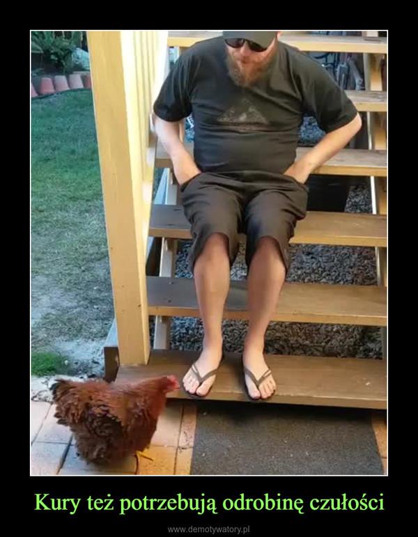 Kury też potrzebują odrobinę czułości –