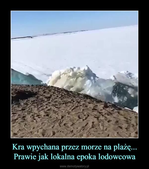 Kra wpychana przez morze na plażę... Prawie jak lokalna epoka lodowcowa –