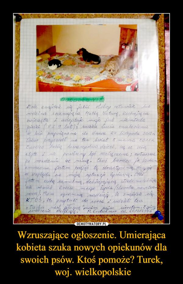 Wzruszające ogłoszenie. Umierająca kobieta szuka nowych opiekunów dla swoich psów. Ktoś pomoże? Turek, woj. wielkopolskie –