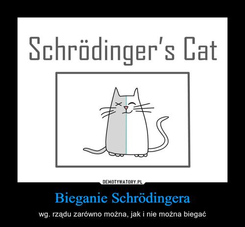 Bieganie Schrödingera
