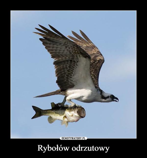 Rybołów odrzutowy –