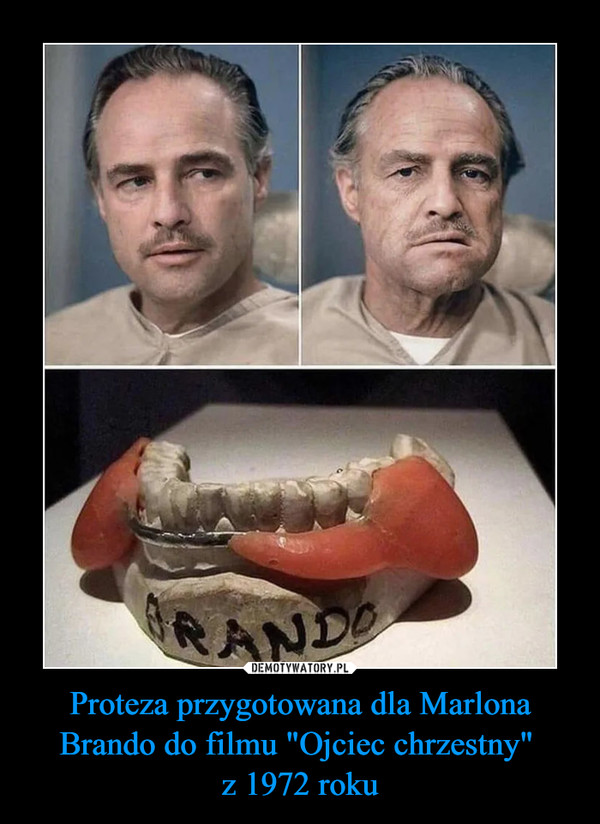 """Proteza przygotowana dla Marlona Brando do filmu """"Ojciec chrzestny"""" z 1972 roku –"""