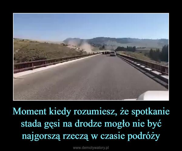 Moment kiedy rozumiesz, że spotkanie stada gęsi na drodze mogło nie być najgorszą rzeczą w czasie podróży –