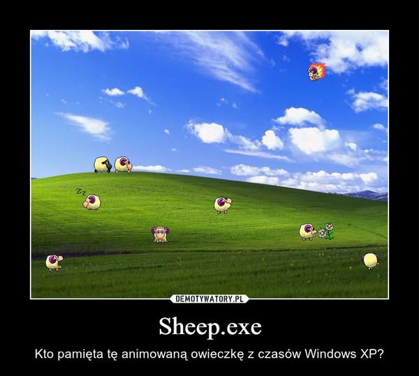 Sheep.exe – Kto pamięta tę animowaną owieczkę z czasów Windows XP?