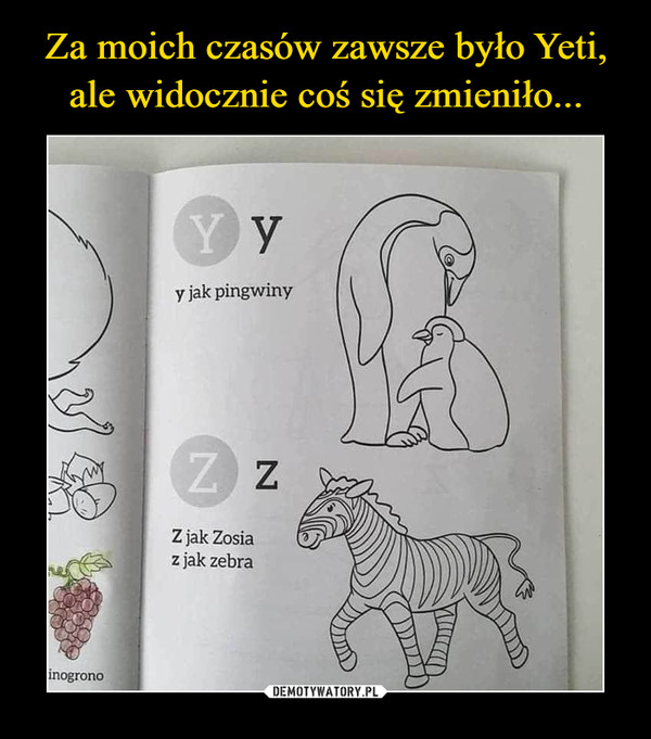 –  y jak pingwinZ jak Zosiaz jak zebra