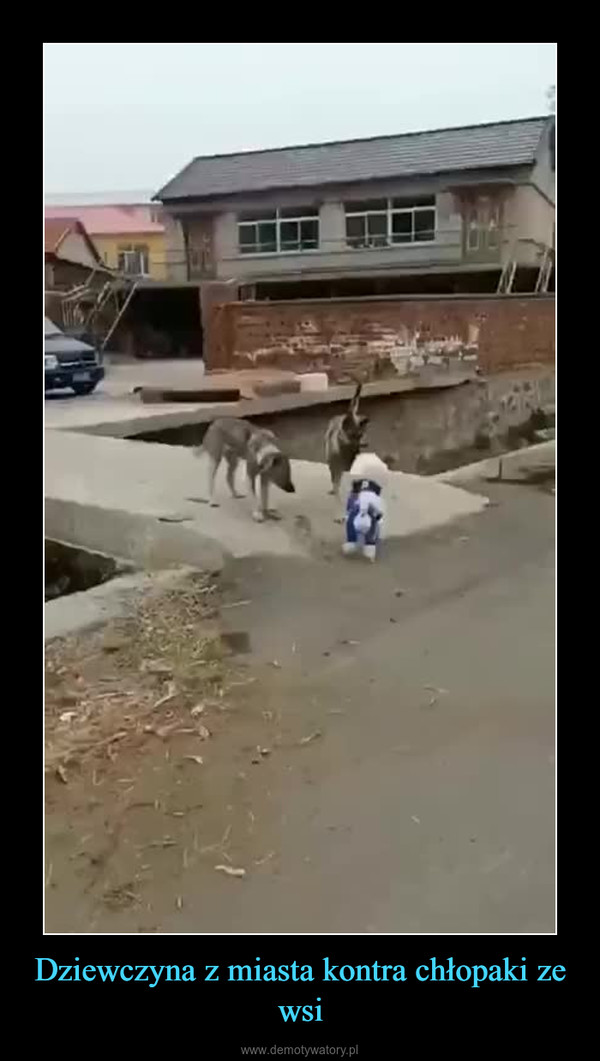 Dziewczyna z miasta kontra chłopaki ze wsi –