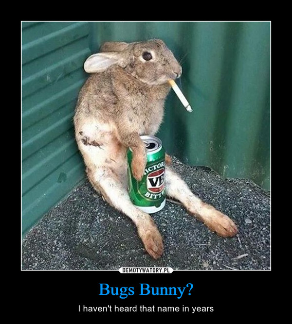 Bugs Bunny? – I haven't heard that name in years