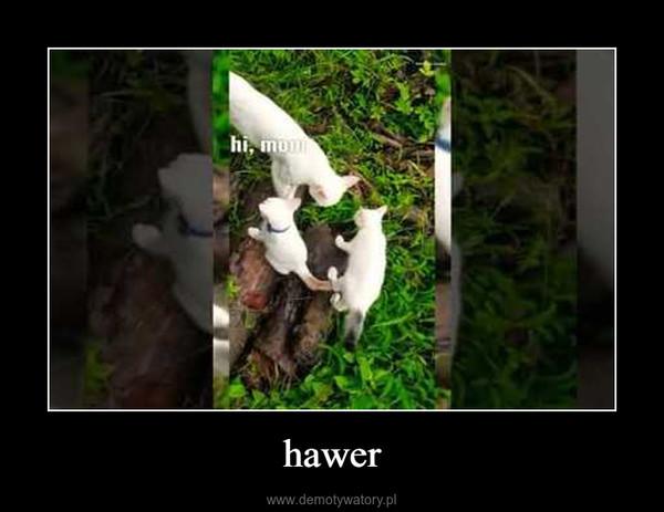 hawer –