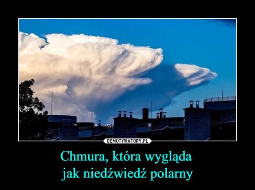 Chmura, która wygląda  jak niedźwiedź polarny