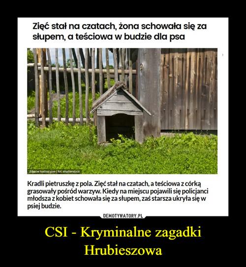 CSI - Kryminalne zagadki Hrubieszowa