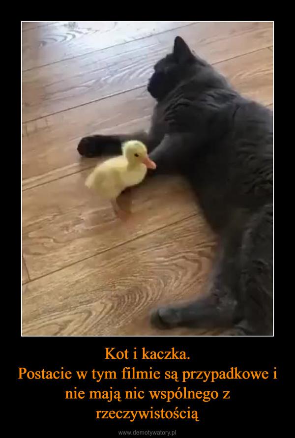 Kot i kaczka.Postacie w tym filmie są przypadkowe i nie mają nic wspólnego z rzeczywistością –