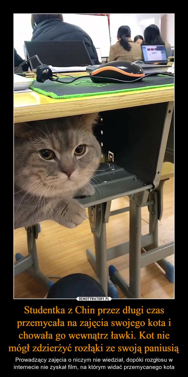 Studentka z Chin przez długi czas przemycała na zajęcia swojego kota i chowała go wewnątrz ławki. Kot nie mógł zdzierżyć rozłąki ze swoją paniusią – Prowadzący zajęcia o niczym nie wiedział, dopóki rozgłosu w internecie nie zyskał film, na którym widać przemycanego kota