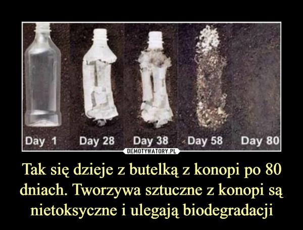 Tak się dzieje z butelką z konopi po 80 dniach. Tworzywa sztuczne z konopi są nietoksyczne i ulegają biodegradacji –