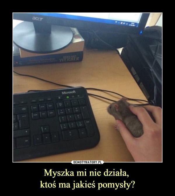 Myszka mi nie działa, ktoś ma jakieś pomysły? –