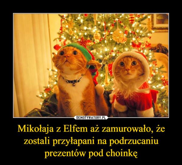 Mikołaja z Elfem aż zamurowało, że zostali przyłapani na podrzucaniu prezentów pod choinkę