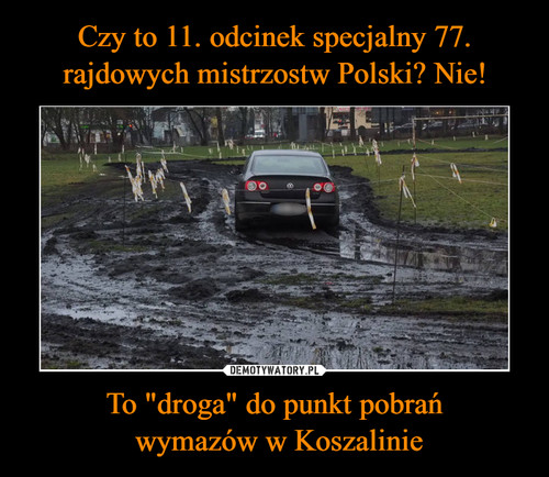 """Czy to 11. odcinek specjalny 77. rajdowych mistrzostw Polski? Nie! To """"droga"""" do punkt pobrań  wymazów w Koszalinie"""