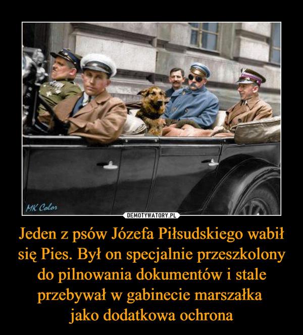 Jeden z psów Józefa Piłsudskiego wabił się Pies. Był on specjalnie przeszkolony do pilnowania dokumentów i stale przebywał w gabinecie marszałka jako dodatkowa ochrona –