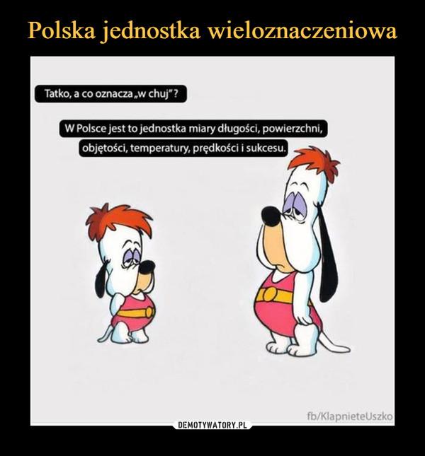 """–  Tatko, a co oznacza.w chuj""""W Polsce jest to jednostka miary długości, powierzchni,objętości, temperatury, prędkości i sukcesu."""