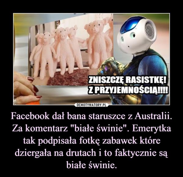 """Facebook dał bana staruszce z Australii. Za komentarz """"białe świnie"""". Emerytka tak podpisała fotkę zabawek które dziergała na drutach i to faktycznie są białe świnie. –"""