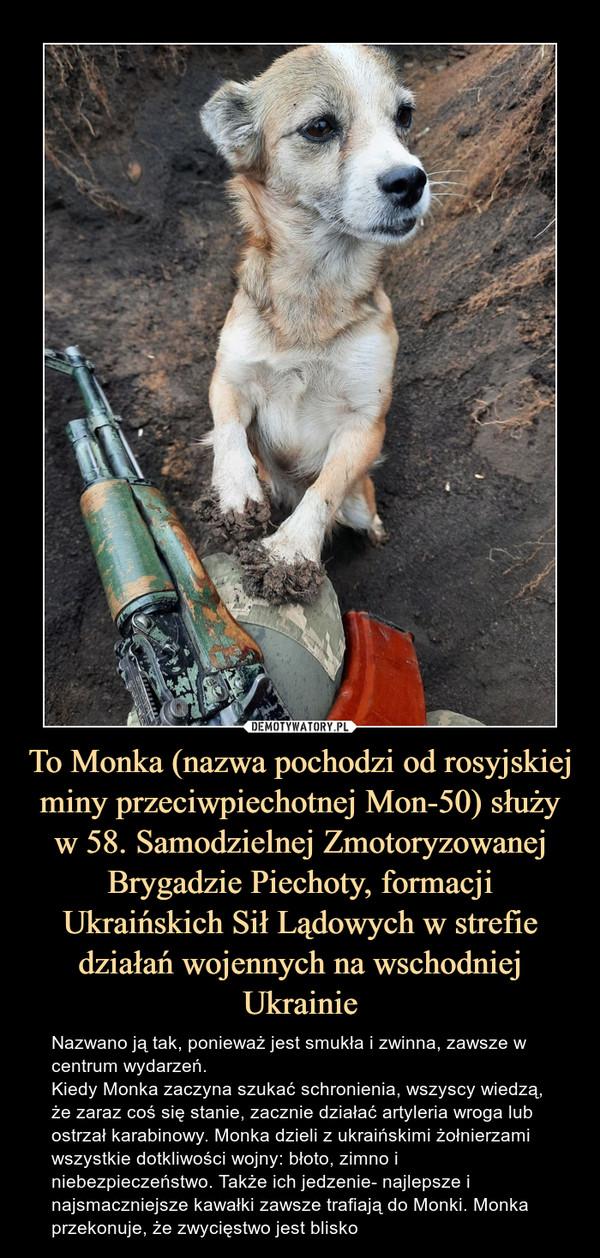 To Monka (nazwa pochodzi od rosyjskiej miny przeciwpiechotnej Mon-50) służy w 58. Samodzielnej Zmotoryzowanej Brygadzie Piechoty, formacji Ukraińskich Sił Lądowych w strefie działań wojennych na wschodniej Ukrainie – Nazwano ją tak, ponieważ jest smukła i zwinna, zawsze w centrum wydarzeń.Kiedy Monka zaczyna szukać schronienia, wszyscy wiedzą, że zaraz coś się stanie, zacznie działać artyleria wroga lub ostrzał karabinowy. Monka dzieli z ukraińskimi żołnierzami wszystkie dotkliwości wojny: błoto, zimno i niebezpieczeństwo. Także ich jedzenie- najlepsze i najsmaczniejsze kawałki zawsze trafiają do Monki. Monka przekonuje, że zwycięstwo jest blisko