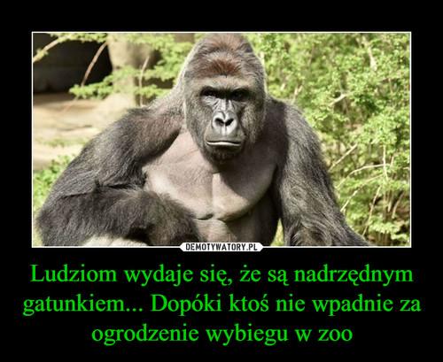 Ludziom wydaje się, że są nadrzędnym gatunkiem... Dopóki ktoś nie wpadnie za ogrodzenie wybiegu w zoo