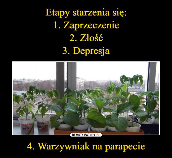 4. Warzywniak na parapecie –