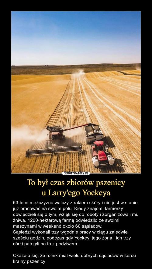 To był czas zbiorów pszenicy u Larry'ego Yockeya