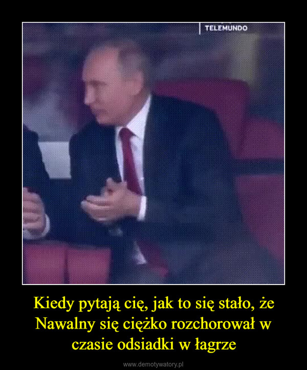 Kiedy pytają cię, jak to się stało, że Nawalny się ciężko rozchorował w czasie odsiadki w łagrze –