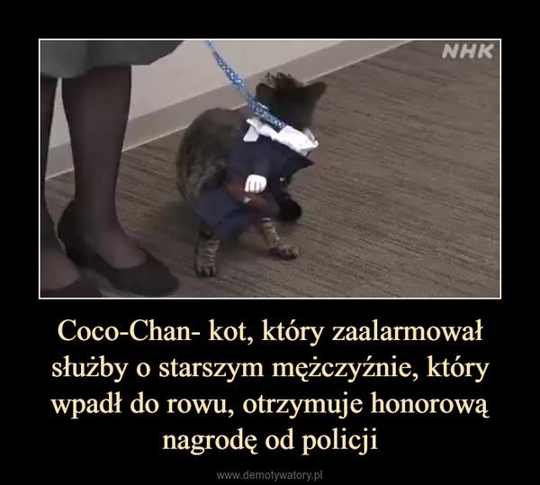 Coco-Chan- kot, który zaalarmował służby o starszym mężczyźnie, który wpadł do rowu, otrzymuje honorową nagrodę od policji –